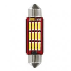LAMPADA SILURO 41MM 10-30V 12SMD D/POLARITY