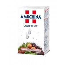 AMUCHINA COMPRESSE DISINFETTANTI 24PZ X 1GR